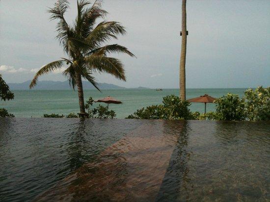 Saree Samui: ビーチの目の前にあるプール