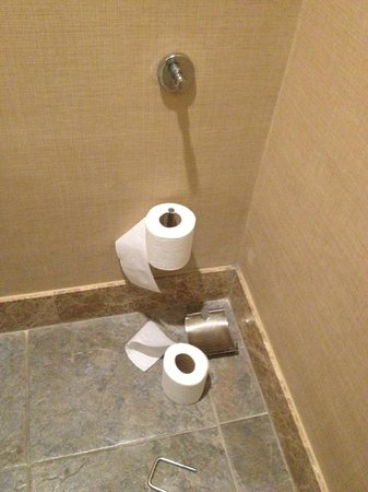 Sherwood Dreams Resort: the toilet paper holder was broken and laying on the floor.
