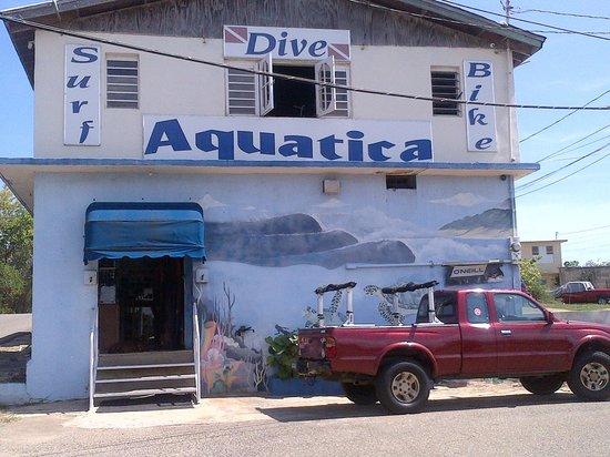 Aquatica Dive and Surf: Diveshop storefront