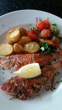 AguaDulce: Mediterranean red mullet