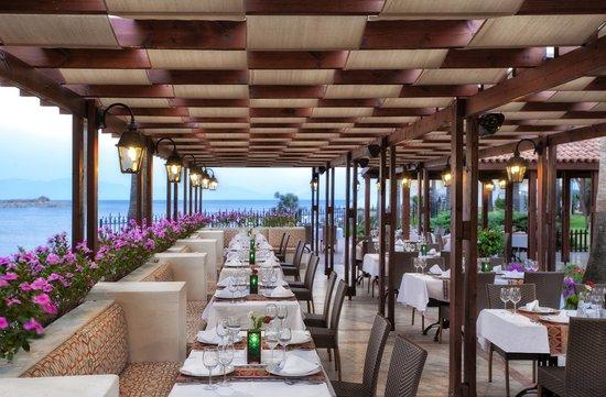 WOW Bodrum Resort: Sini Restaurant