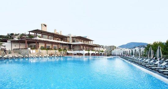 WOW Bodrum Resort: Pool