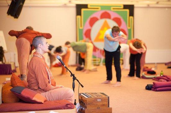 Mangrove Yoga Ashram: Yoga asana class