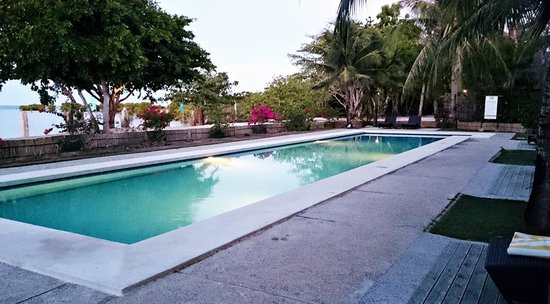 Dos Palmas Island Resort & Spa: The relaxing lap pool beside the serene spa