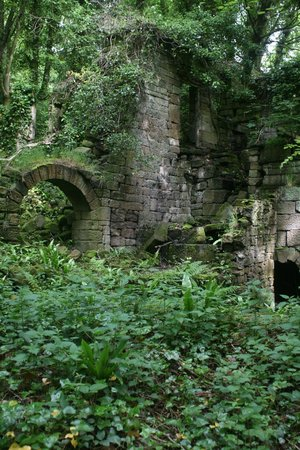 Lumsdale Valley: Ruins