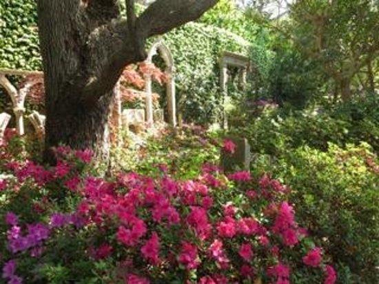 Villa & Jardins Ephrussi de Rothschild: Garden Blooms