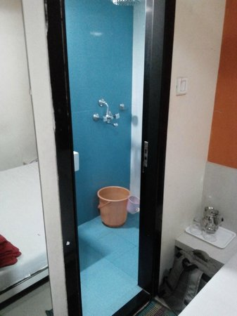 Blue Orchids Executive : Tiny bathroom , but does the job well and very clean