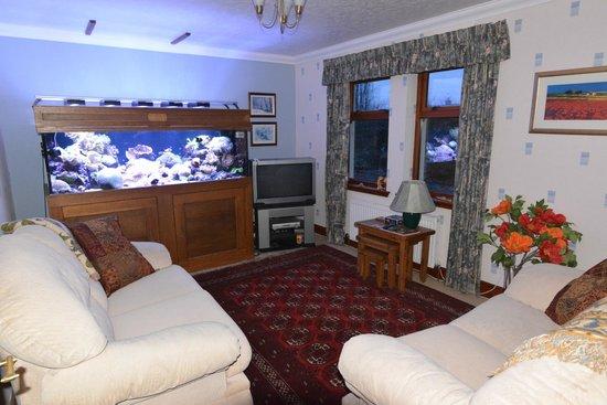 Home Farm Bed & Breakfast: Guest Lounge Home Farm B&B