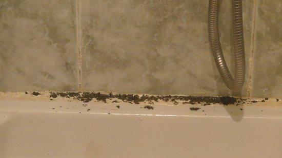 Riad Rahba Marrakech: le Bac à douche sans rideau