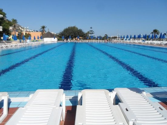 Royal Belvedere : Olympic sized pool