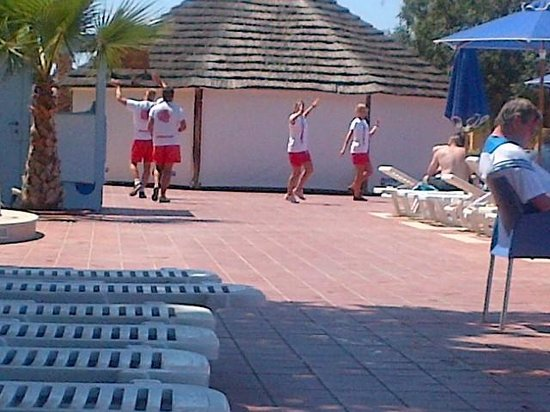 Royal Belvedere : Animation team dancing to their theme song