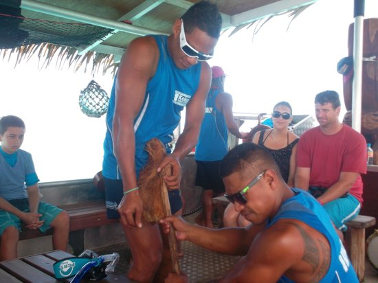 Koka Lagoon Cruises: Showing us how to open up a coconut