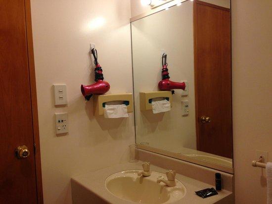 Ambassador Motor Lodge: bath room