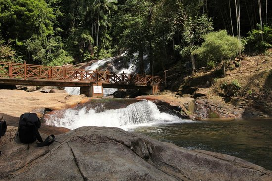 kota tinggi chat sites Special events bring the warmth of doubletree by hilton™ to  an hour's drive will take you to the picturesque kota tinggi waterfall and keen  global sites.