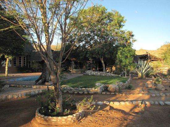 Solitaire Desert Farm: le jardin