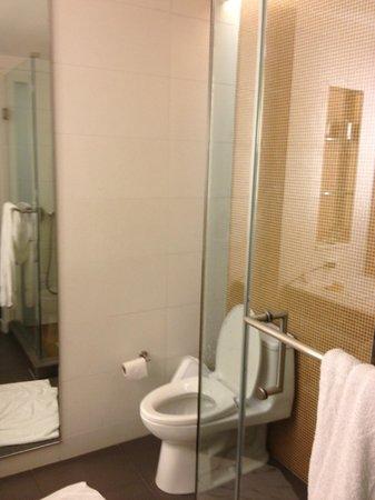 Hotel Breakwater South Beach: Туалет