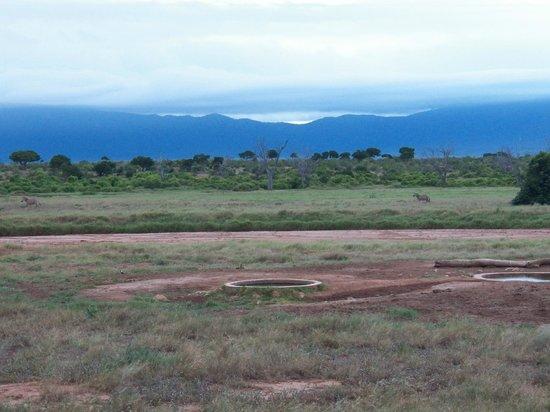 Sentrim Tsavo East: Point d'eau à côté du lodge