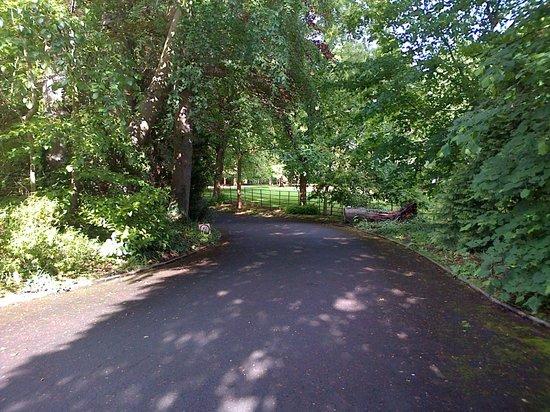 Beechfield House: Driveway