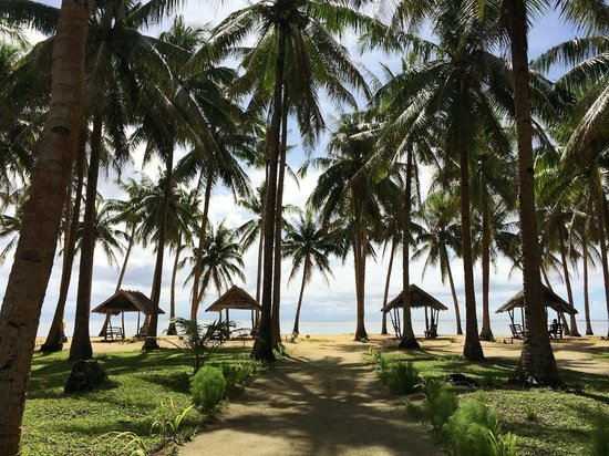 Kermit Surf Resort Siargao: Three minute walk to this secluded beach