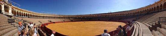 Plaza de Toros de la Maestranza: Panoramica dell'arena