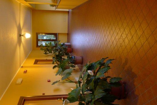 Hotel Italia: Leading to our room