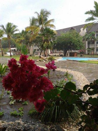 Amani Tiwi Beach Resort : Piscine au centre de l'hôtel