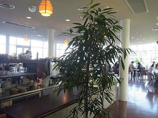 Semba Boadwalk: 弘文cafe