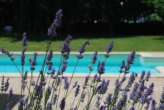 La Roche D'Esteil : la piscine