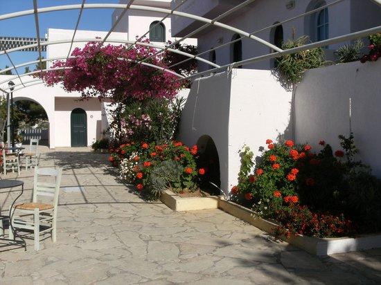 CHC Aroma Creta : agréable tonnelle