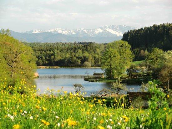 Naturidylle in Degerndorf
