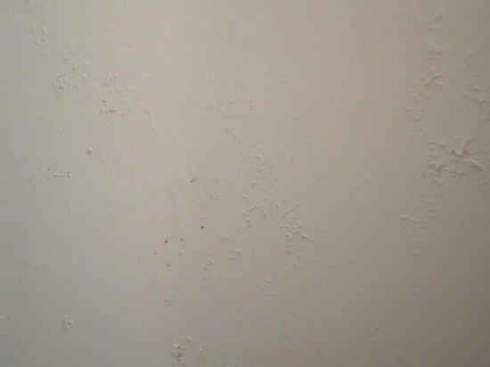 Les Moulins du Duc : humidité mur des toilettes