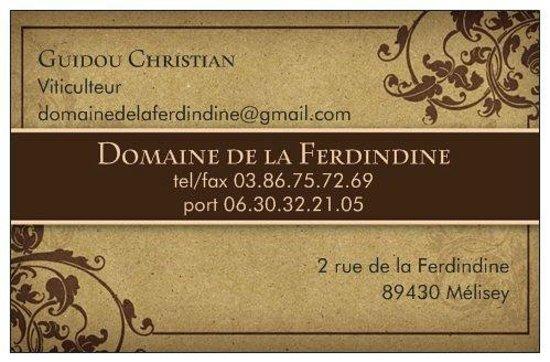 Domaine De La Ferdindine Carte Visite