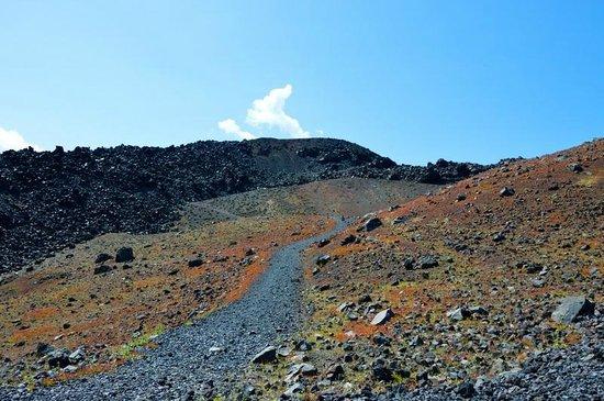 Santorini Volcano: Дорога вглубь вулкана