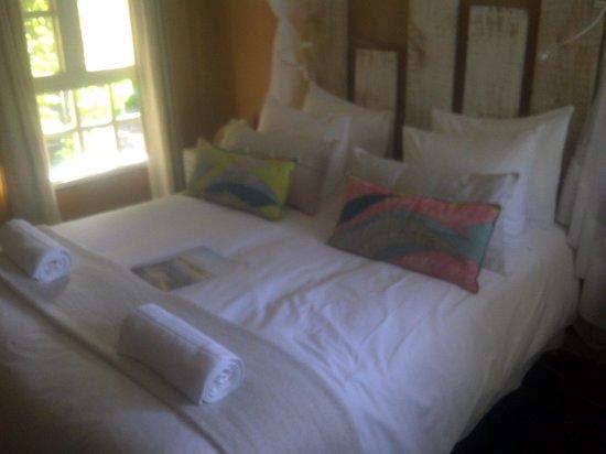 Amigo Lodge: Our suite