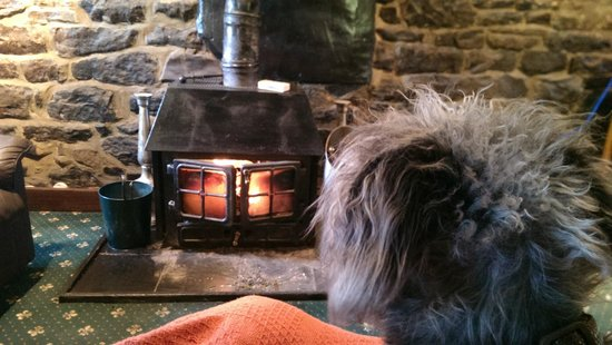 Scotchcoulthard Self-Catering Holiday Cottages: Guinness cuddles by the fire :) <3