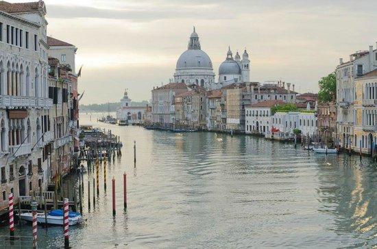 Ponte dell'Accademia : Vista sul Canal Grande