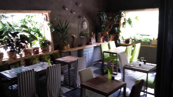 Green Ecolodge: salle de restaurant