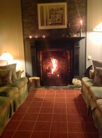 Carradale Hotel: lounge fire