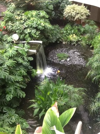 Melia Salinas - Adults recommended: Indoor Botanical garden and water falls
