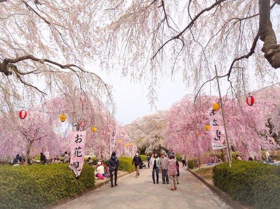 Taman Tsutsujigaoka