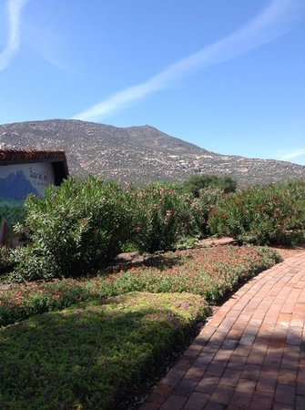 Rancho La Puerta Spa: outside the new wine/coffee bar and gift shop