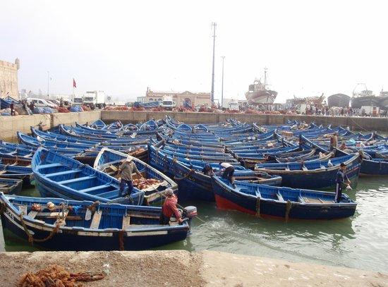 Riad Al Madina: Haventje van Essaouira