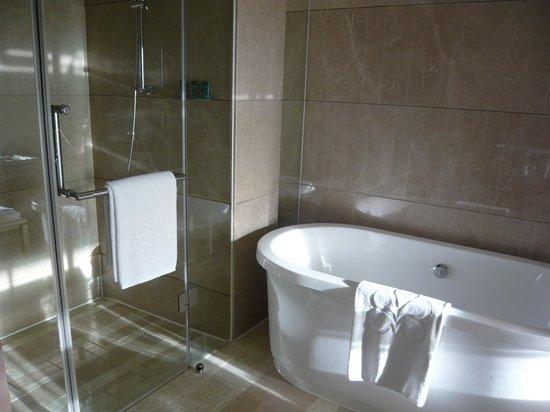 Hotel Nikko Saigon: シャワーは独立してます