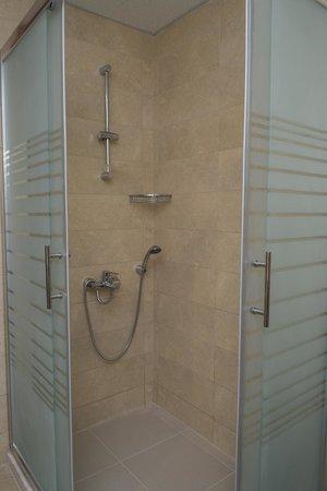 Selena Hotel: shower