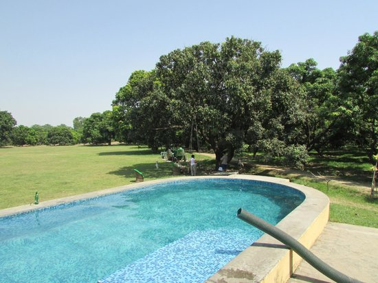 The Fort Unchagaon, By Aspen: Small splash pool in the Mango groves
