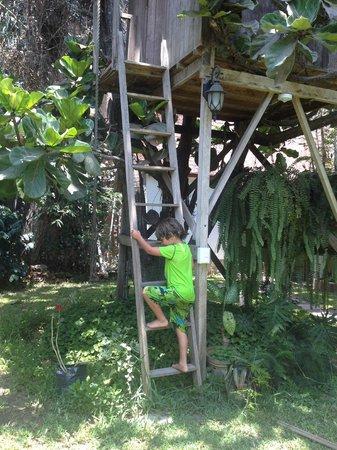 Posada Monterrico: casa en el árbol