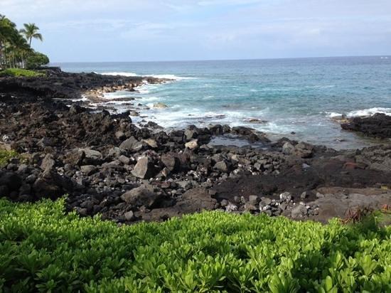 Wyndham Royal Sea Cliff: lava rock beach