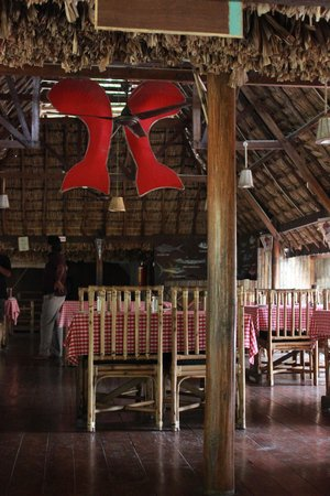 Wild Orchid : red snapper restaurant