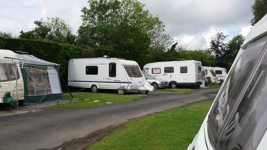 Holmans Wood Holiday Park: A peaceful location