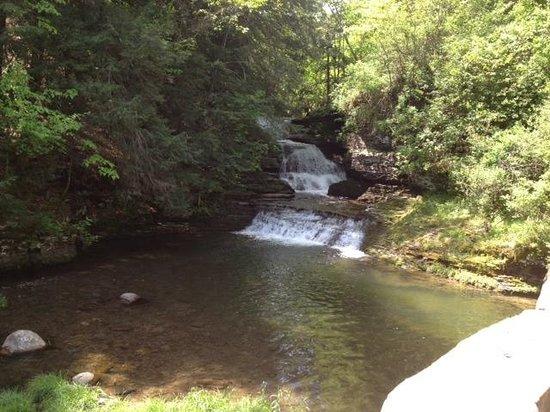 Robert Treman State Park: Lower Falls